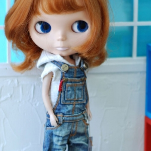 Blythe New Washing Overall