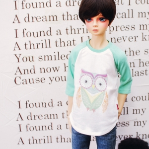 SD13 Boy Owl T shirt
