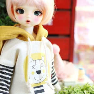 USD Lion Hooded - Mustard